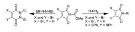 A Mild Synthesis of N-functionalised Bromomaleimides, Thiomaleimide and Bromopyridazinediones.