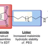Reversible Protein Affinity-Labelling Using Bromomaleimide-Based Reagents.